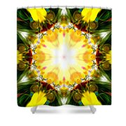 Forest Dawning Shower Curtain