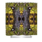 Forest Disaster C Shower Curtain