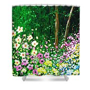 Forest Entrance Shower Curtain