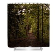 Forest Entry Shower Curtain