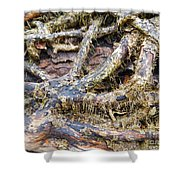 Forest Fingers Shower Curtain
