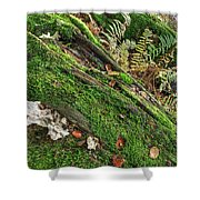 Forest Floor Fungi And Moss Shower Curtain