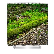 Forest Floor Gosnell Big Woods Shower Curtain