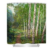 Russian Forest Footpath Shower Curtain