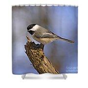Forest Friend Shower Curtain