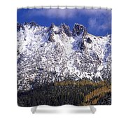 Forest Gold Shower Curtain
