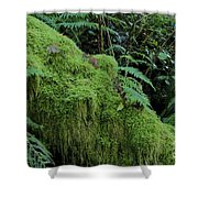 Forest Greenery Shower Curtain