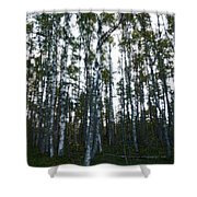 Forest II Shower Curtain