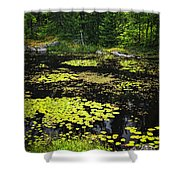 Forest Lake With Lily Pads Shower Curtain