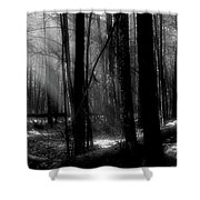 Forest Light In Black And White Shower Curtain