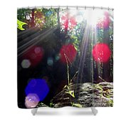 Forest Lightscape Shower Curtain