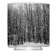 Forest Of Snow Shower Curtain