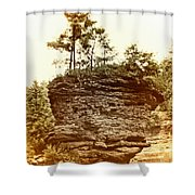 Forest On A Rock Shower Curtain