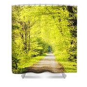 Forest Path In Spring With Bright Green Trees Shower Curtain
