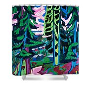 Forest Path In Summer Shower Curtain