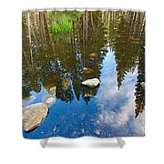 Forest Reflection Shower Curtain