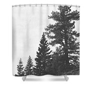 Forest Ridge Shower Curtain