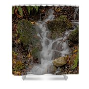 Forest Stream Cascade Shower Curtain