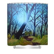 Forest Sunlight Shower Curtain
