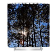 Forest Sunset Shower Curtain