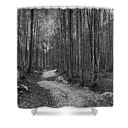 Forest Trail Bw Shower Curtain