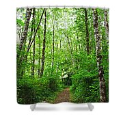 Forest Trail To Follow Shower Curtain