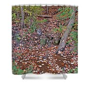 Forest Trickle Shower Curtain