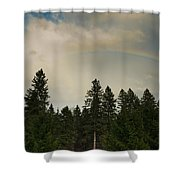 Forest Under The Rainbow Shower Curtain
