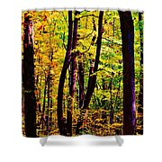 Forest Waves Shower Curtain