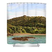 Forested Coast Line Shower Curtain