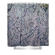 Forests Of Frost Shower Curtain