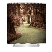 Forever In Dreams Shower Curtain
