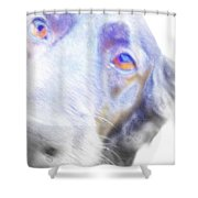A Dog Will Be Forever Yours  Shower Curtain