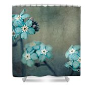 Forget Me Not 01 - S22dt06 Shower Curtain