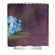 Forget Me Not 02 - S0304bt02b Shower Curtain