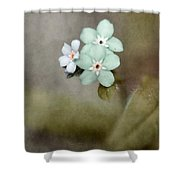Forget Me Not 03 - S07bt07 Shower Curtain