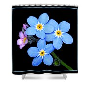 Forget-me-nots Shower Curtain