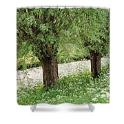 Forgotten Dreams. The Spring Has Arrived. Netherlands Shower Curtain