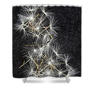 Forgotten Wishes Shower Curtain