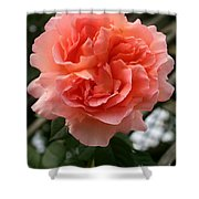 Formidable Bloom Shower Curtain