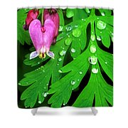 Formosa Bleeding Heart On Ferns Shower Curtain