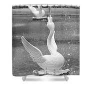 Forsyth Park Fountain - Black And White 3 2x3 Shower Curtain