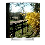 Forsythia Along The Highway Shower Curtain