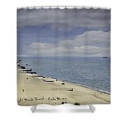 Fort Gratiot Light House Beach Shower Curtain