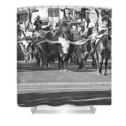 Fort Worth Herd Cattle Drive Shower Curtain