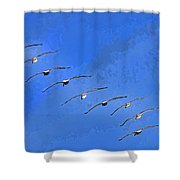 Forteen In Flight Shower Curtain