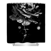 Forth Then Bled  Shower Curtain