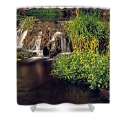 Fossil Creek Shower Curtain