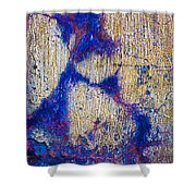 Foundation Number Ten Shower Curtain
