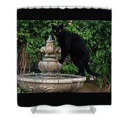 Fountain Cat Shower Curtain